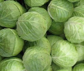 насіння капусти