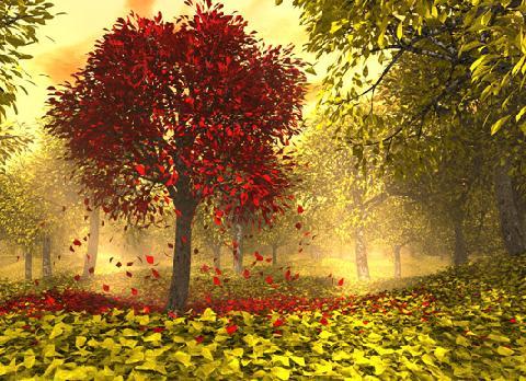 вчимо вірш про осінь