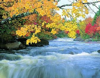 вірші про осінь дітям